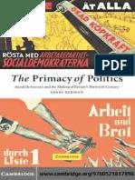 DEMOCRACY The Primacy of Politics Social Democracy and the Making of Europe's Twentieth Century.pdf