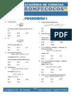 Polinomios PDF