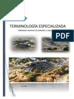 TERMINOLOGIAS-EN-PIT.docx