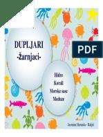 Dupljari1