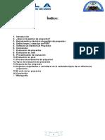 Monografia de Evaluacion y Gestion de Proyectos