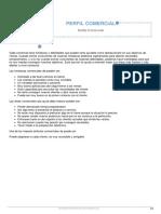 Informe Disc Seleccion Ejemplo Modulo Perfil Comercial