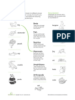 classifying-animals.pdf