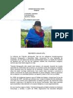 TRANSITO AMAGUAÑA- TRABAJO AYUI HENRY.docx