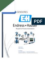 sensores endress hausel