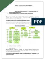 Materiales Plásticos y Elastómeros. Imprimir Docx