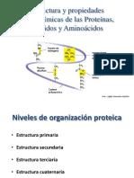 2.2. Proteinas