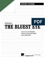 Bluest Eye Study Guide
