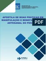 Apostila de Beneficiamento.pdf