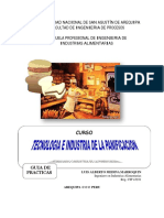 Guia - Practicas (1)-Converted