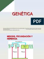 27-genetica.ppsx