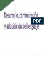 Desarrollo Comunicacion y Adquisicion Del Lenguaje
