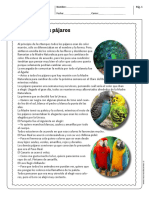 EL COLOR DE LOS PÁJAROS 5° Y 6°.pdf