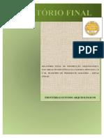 relatório de arqueologia - Fazenda gaitas