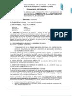 003_TDR mejoramiento transitabilidad estadio.docx