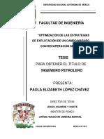 Tesis.OPTIMIZACIÓN DE LAS ESTRATEGIAS DE EXPLOTACIÓN DE UN CAMPO MADURO CON RECUPERACIÓN SECUNDARIA (7).pdf