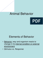 animal behavior 2018