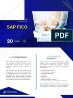de SAP FICO 1