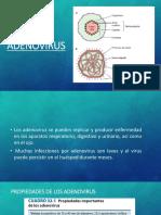 4 Adenovirus