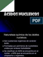 Ácidos Nucleicos Diapositivas W