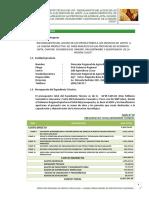MAIZ (CAP. I, II, III).pdf