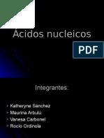 Ácidos nucleicos diapositivas