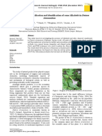 Characterization, Purification and Identification of Some Alkaloids in Datura