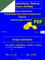 Acidos Carboxilicos-Esteres-Aminas e Amidas QA.2012