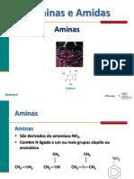 Aminas_Amidas_QA2012.pdf