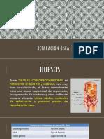 REPARACIÓN ÓSEA.pptx
