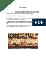 PROPOLEOS.pdf
