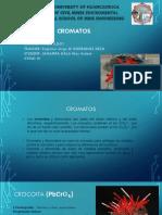 CROMATOS.pptx