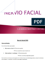 Nervio Facial 1