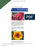 Las 15 Flores Más BONITAS (Con Fotos) ® Florespedia.pdf