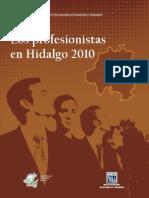 PROFESIONISTAS EN HIDALGO 2010