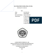 laporan-mekflu-5.docx