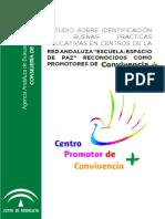Estudio buenas prácticas Red Esc Paz_C+