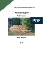 MicroProPagare.doc