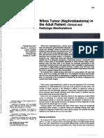 nefroblastoma dewasa
