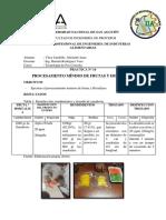 Practica 14 - procesamiento minimo de frutas y hortalizas abelardo.docx