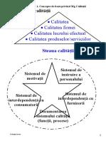 MGQ diagrame,modele.doc