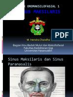 Sinus Maxilaris Sudah Di Edit