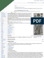 En Wikipedia Org