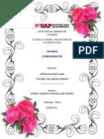 Carbohidratos UAP PDF