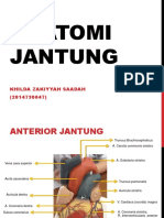 ANATOMI  JANTUNG.pptx