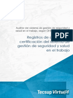 REGISTRO DE AUDITORES.pdf