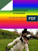NEUROPATOLOGIE.pptx