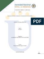 Problema2_Anderson_Plata.docx