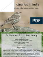 Bird-Sanctuaries-in-India-3973534.pps