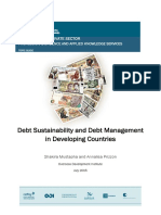 EPS PEAKS Topic Guide Debt Sustainability and Debt Management in Developing Countries